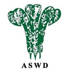 ASWD Track and Field athletes shines in 2019